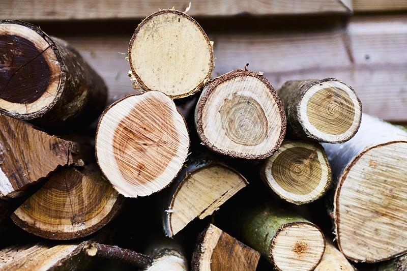 Zacht hout zoals berkenhout, lindehout, pijnboomhout, wilgenhout of hout van de paardenkastanje kan gemakkelijker bewerkt worden.