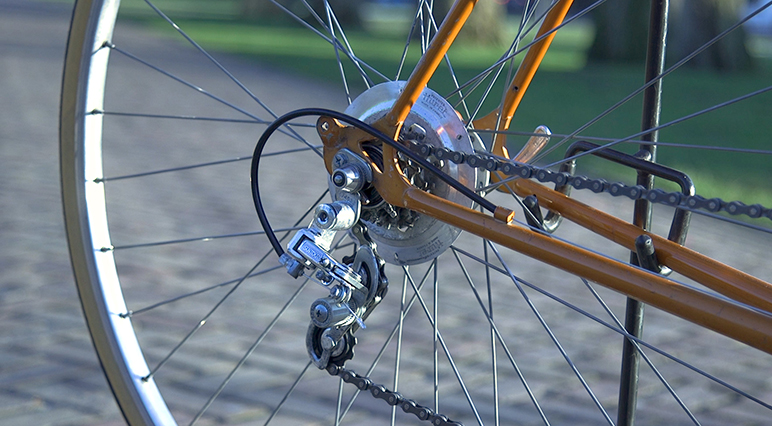 Befolge die Schritte zum Reinigen und Polieren des hinteren Umwerfers deines Fahrrads