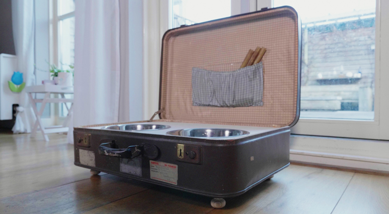 Cutting Project: Turn an Old Suitcase into a Pet-feeding Station