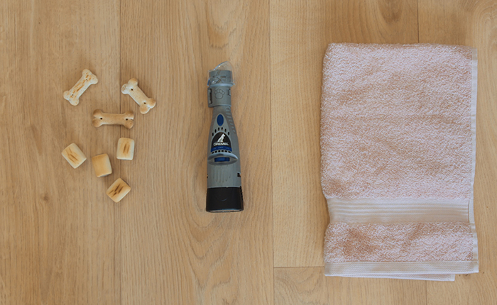 Dremel essentials for Cutting Your Dog's Nails.